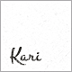 Kari WordPress Nulled