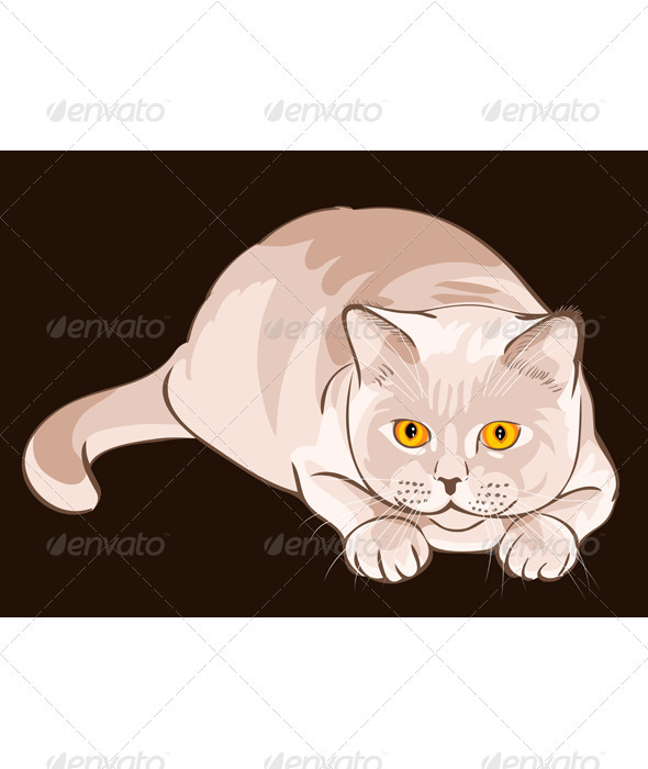 Vector British shorthair lilac cat sits in ambush - Animals Characters
