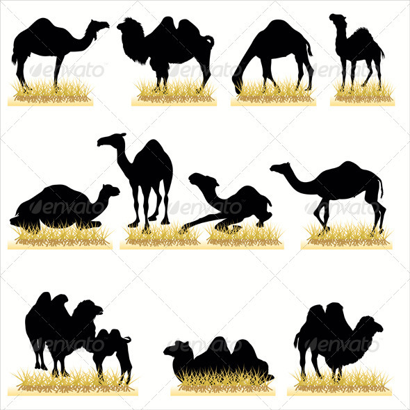 Camels Silhouettes Set - Animals Characters