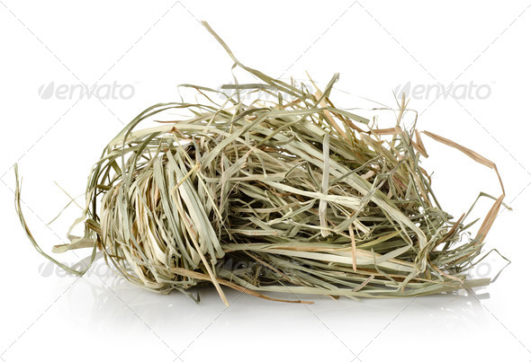Meadow hay - Stock Photo - Images