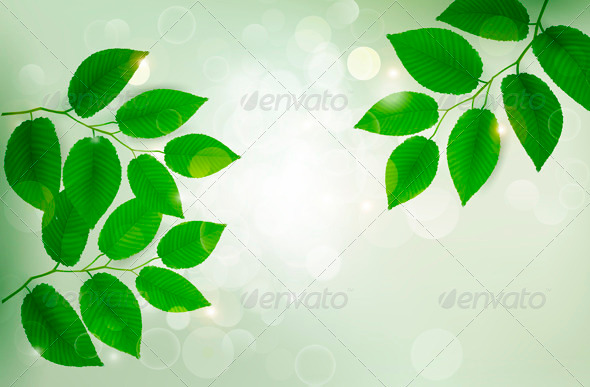 Nature Background with Green Fresh Leaves - Flowers & Plants Nature