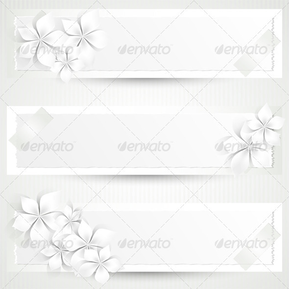 White Flowers Banners - Backgrounds Decorative