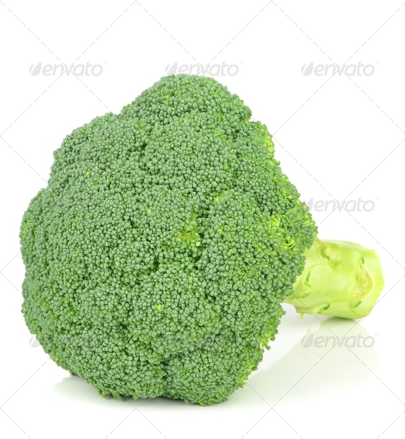 Fresh Piece of Broccoli - Stock Photo - Images