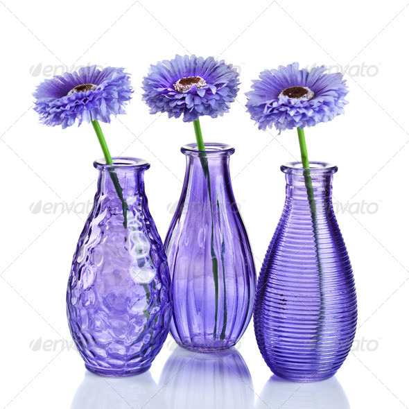 Blue flowers in vases isolated on white - Stock Photo - Images