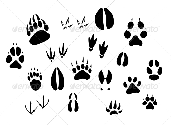 Animal Footprints Silhouettes - Decorative Symbols Decorative