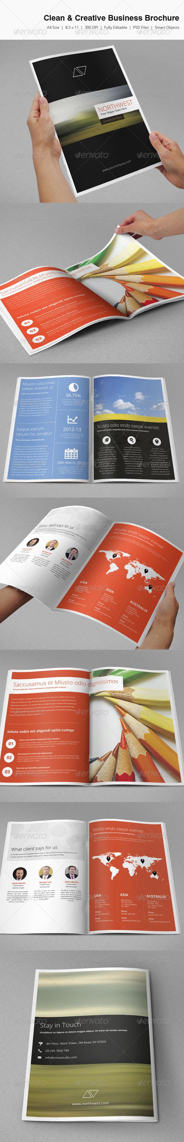 Clean & Creative Business Brochure - Corporate Brochures