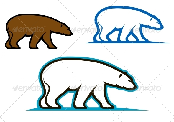 Wild Bears - Animals Characters