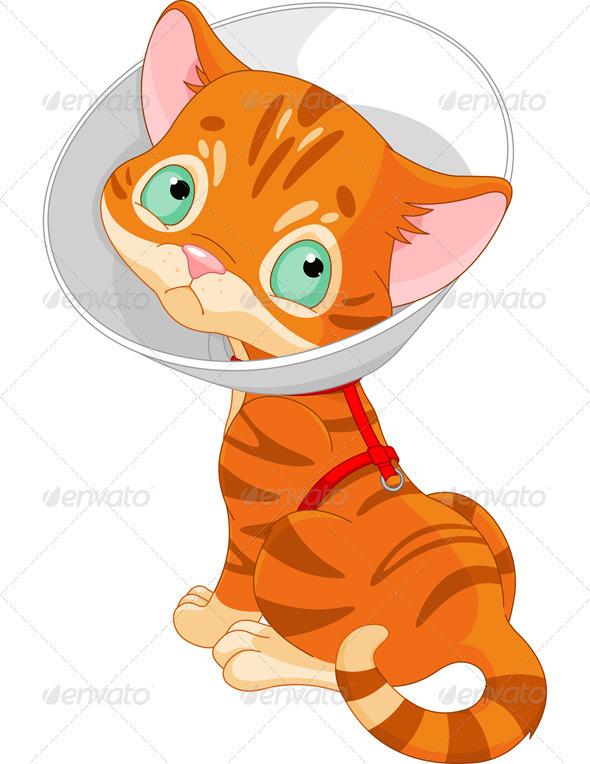 Sick Kitten  - Animals Characters
