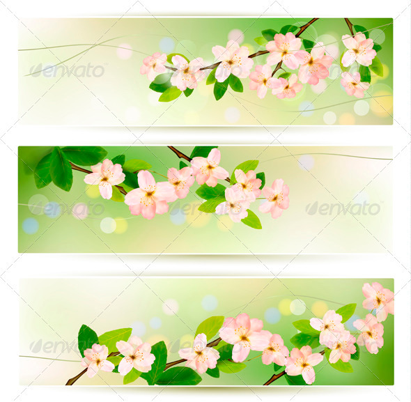 Three Spring Banners with Blossoming Tree Brunch - Flowers & Plants Nature