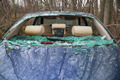 car accident with destroyed glass - PhotoDune Item for Sale