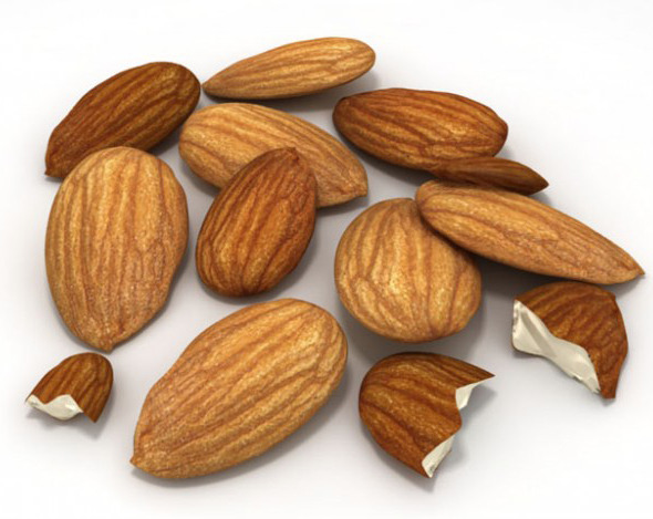 Almonds Unshelled - 3DOcean Item for Sale