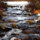 Bubbling Brook - VideoHive Item for Sale