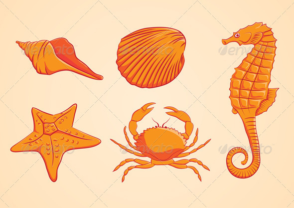 Sea Animal Orange - Animals Characters