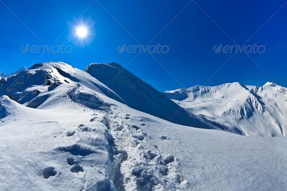 Negoiu peak in winter - Stock Photo - Images