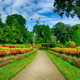 A beautiful alley in the Park with exotic plants - PhotoDune Item for Sale
