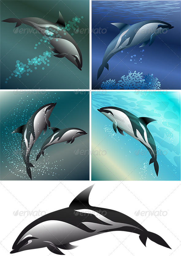 Dolphin Set - Animals Characters
