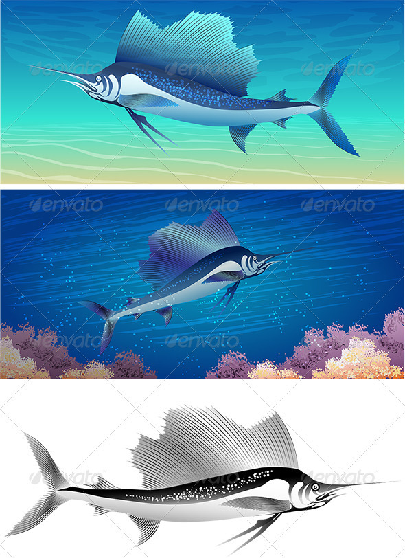 Sailfish Set - Animals Characters