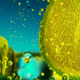 Lime In Cocktail With Falling Ice Cubes - VideoHive Item for Sale