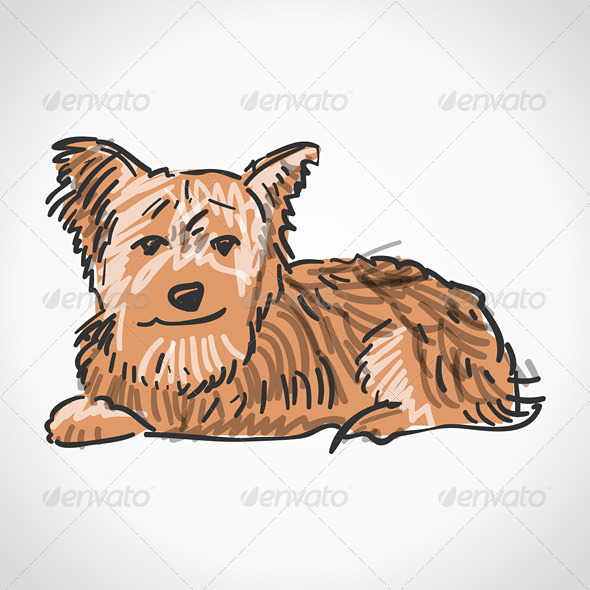 Sitting Yorkshire Terrier - Animals Characters