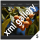 ADVANCED XML IMAGE GALLERY v25