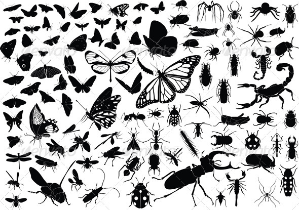 100 Insects - Animals Characters