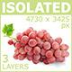 Pink Grape - GraphicRiver Item for Sale