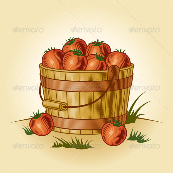 Retro Bucket Of Tomatoes - Food Objects