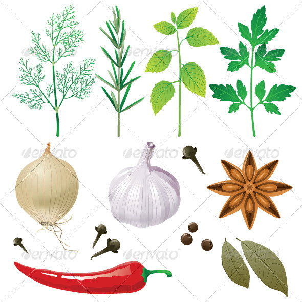Herbs and Spices - Food Objects