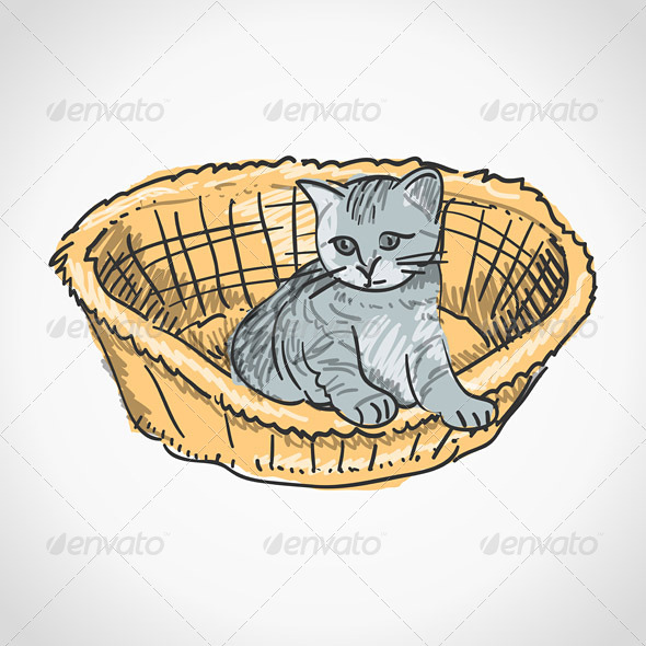 Kitten in Basket - Animals Characters