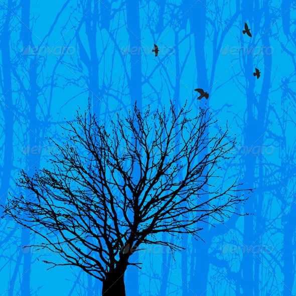 Birds And Tree - Landscapes Nature