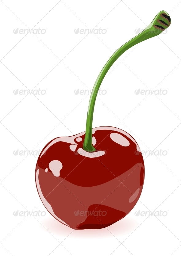 Vector illustration of a cherry - Food Objects