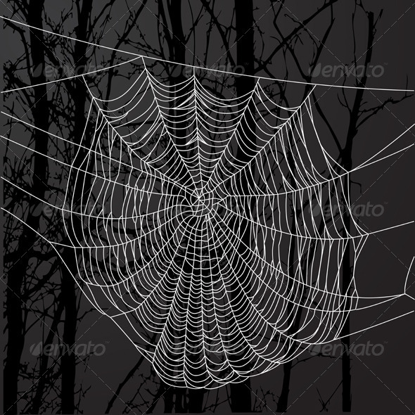 Spider Web And Tree - Organic Objects Objects