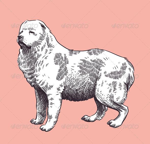 Dog Shepherd Caucasian Mid-Asian Vector - Animals Characters
