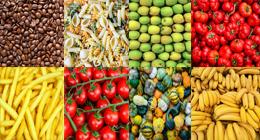 Food Textures