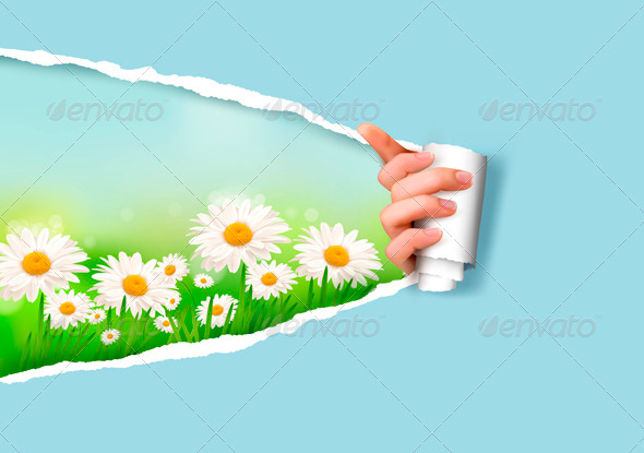 Nature Background with Flowers and Ripped Paper - Flowers & Plants Nature