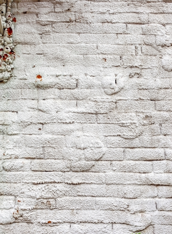 Vintage white background brickwall - Stone Textures