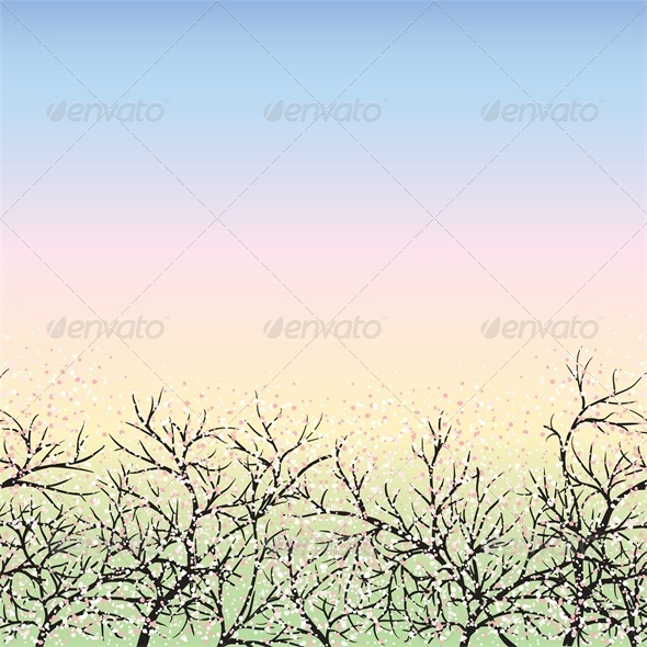 Blooming trees and blue sky, dawn - Seasons Nature
