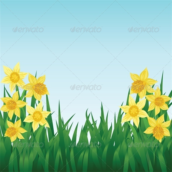 Spring Background with Daffodils and Grass - Flowers & Plants Nature