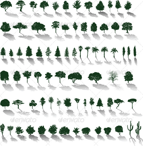 Vector Trees with Shadows - Flowers & Plants Nature