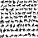 100 Horses - GraphicRiver Item for Sale