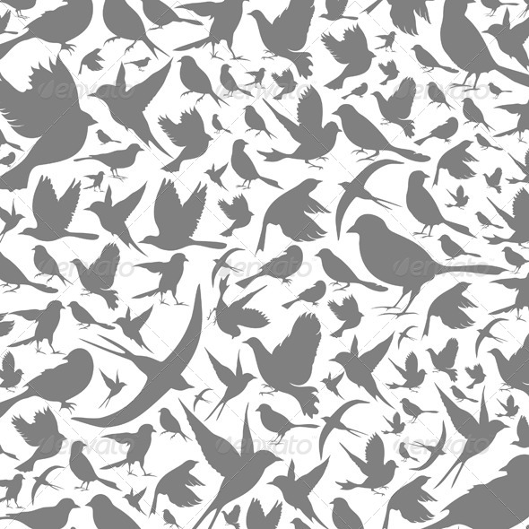 Birds Background - Backgrounds Decorative