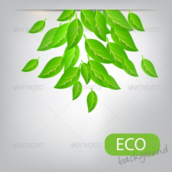 Eco Leaves Background - Flowers & Plants Nature