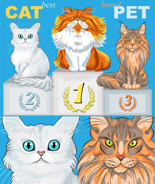 Cat Champions on Podium  - Animals Characters