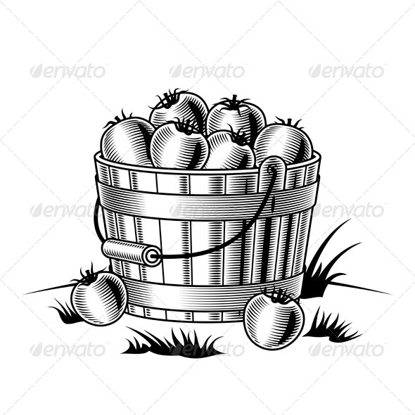 Bucket Of Tomatoes Black And White - Food Objects
