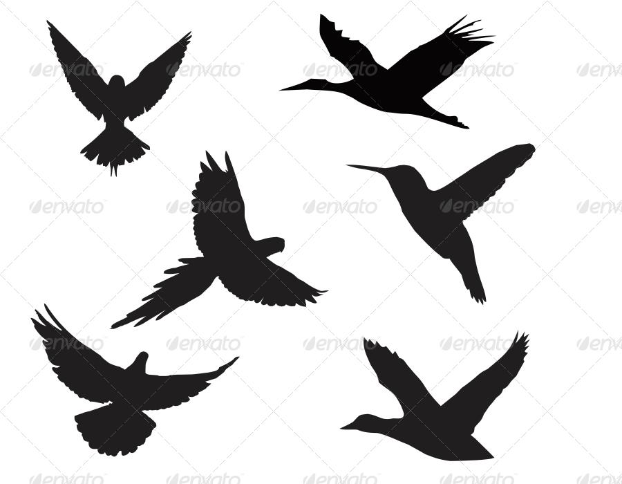 Birds Silhouette Pack