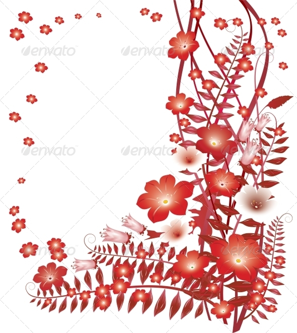 Delicate Red Flowers on White Background - Flowers & Plants Nature