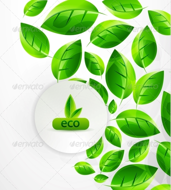 Green Nature Background - Backgrounds Decorative