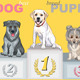 Vector Puppy Dog Champion on the Podium - GraphicRiver Item for Sale