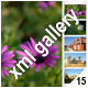 ADVANCED XML IMAGE GALLERY _v26