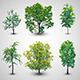 Vector Tree Set - GraphicRiver Item for Sale